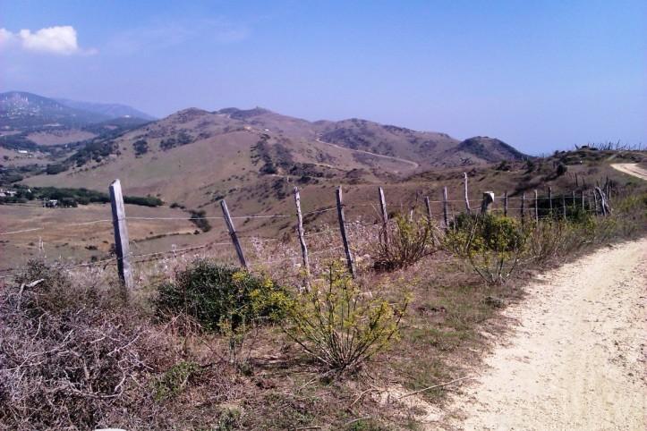 Down the hill behind Tarifa Trafico.