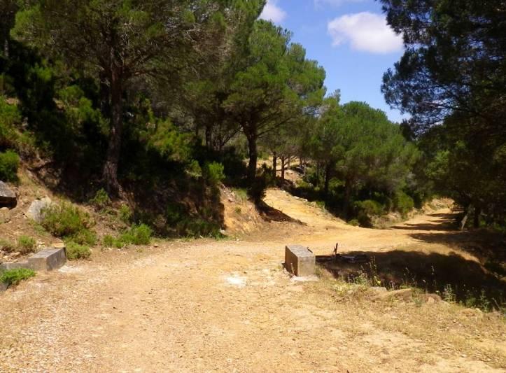 This is mountainbiking in Tarifa.