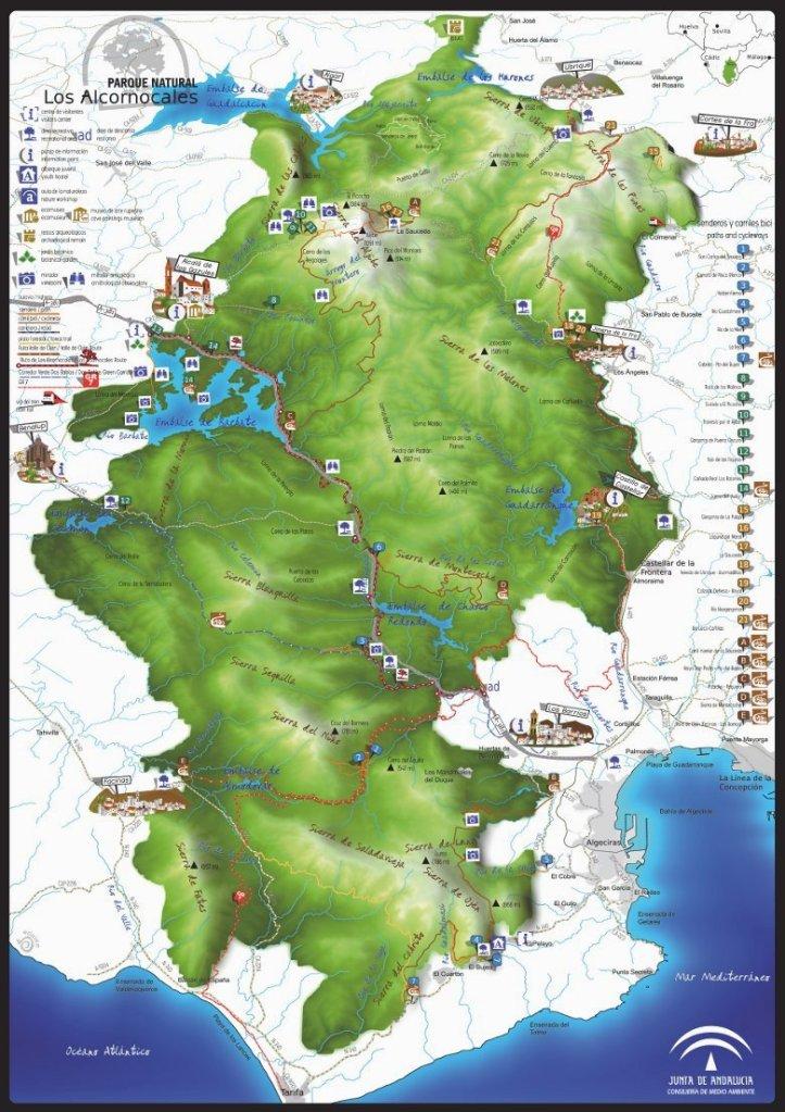 Donde ir. Los Alcornocales en el sur de España. MtbTarifa