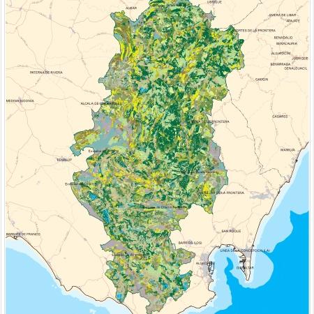 Mapa de Vegetacion del Parque Natural Los Alcornocales. MtbTarifa