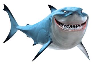 Bruce Shark Smile on Handlebar