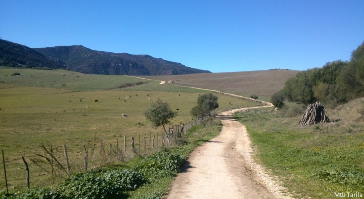 Great Trails for XC and Marathon Mountain bikers