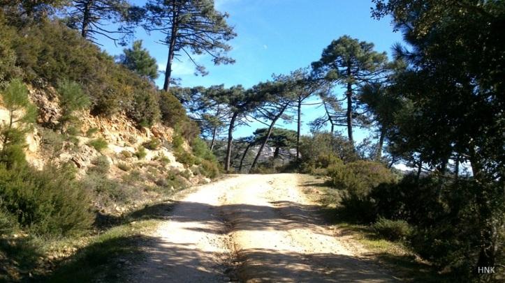 Endless Trails