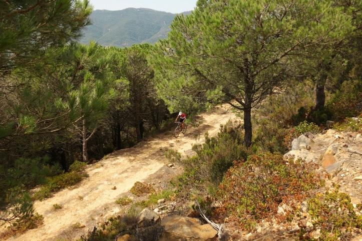 To the top of Monte Diablo