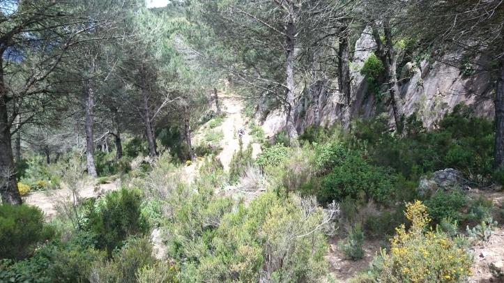 Devil Mountain / Monte Diablo