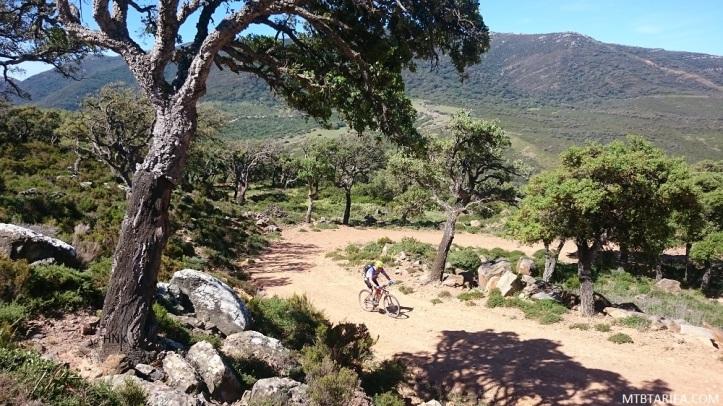 Salaviejas is a nice climb